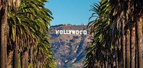 Кой взима най-много пари в Холивуд (ГАЛЕРИЯ)