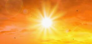 2019 година е била една от трите най-топли в историята
