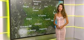 Прогноза за времето (13.08.2020 - обедна)