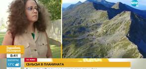 СБЛЪСЪК В ПЛАНИНАТА: Туристка твърди, че е нападната от хижар (ВИДЕО)