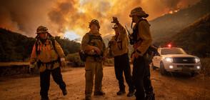 Пожар обхвана 40 000 дка гори в Лос Анджелис (ВИДЕО+СНИМКИ)