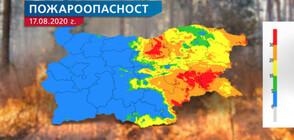 ПРЕЗ ПОЧИВНИТЕ ДНИ: Опасност от пожари в 8 области на страната (ВИДЕО)