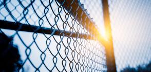 Сърбия вдига ограда по границата с България?