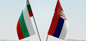 Serbia denies information about construction of fence at border with Bulgaria