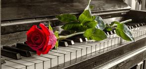 МУЗИКА ВЪВ ВОДАТА: Роял на сал в Гребната база в Пловдив (ВИДЕО)