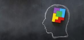 Кога мозъкът ни е в най-добра форма?