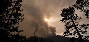 Димът от пожарите в САЩ стигна до Европа (ВИДЕО)