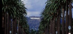 Холивудските звезди с корени от Източна Европа (ГАЛЕРИЯ)