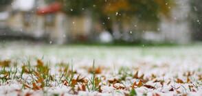 Зимата идва със сняг и студ