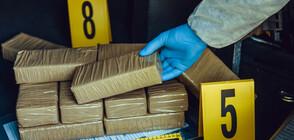 ДОКЛАД: Кокаинът е по-достъпен от всякога в Европа