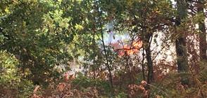 Нов пожар край Шумен