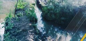 Tеч от години наводнява дворове в радомирско село (ВИДЕО)