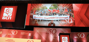 Знакови имена в БСП останаха извън новия Национален съвет