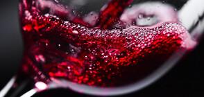 Хиляди литри червено вино се изляха в испански завод (ВИДЕО)