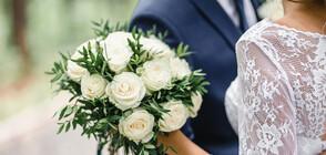 В Сърбия отложиха около 40 000 сватби заради коронавируса