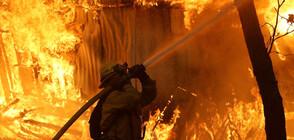 ПОЖАР В САЩ: Евакуираха стотици къщи и болница