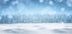 Падна първият сняг за сезона (СНИМКИ)