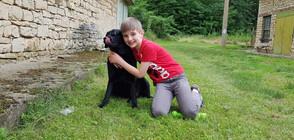 Kучета-асистенти помагат на диабетици