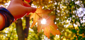 Ще продължи ли хубавото време през октомври?