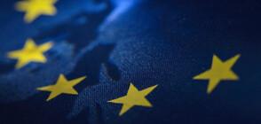 Противоположни реакции за доклада на Европейската комисия (ОБЗОР)
