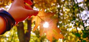 Слънце и есенни дъждове ще се редуват в следващите дни