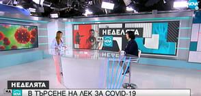 Кога ще има българска ваксина срещу COVID-19?