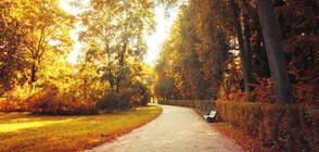 Предстои суха, но прохладна есенна седмица
