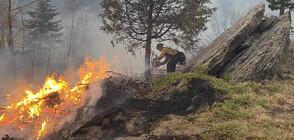Евакуация в Колорадо заради огромен пожар (ВИДЕО+СНИМКИ)