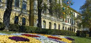 Великотърновският университет минава изцяло на електронно обучение