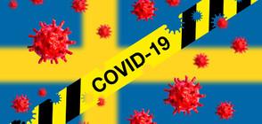 Швеция постави рекорд по броя на заразените за 24 часа