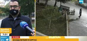 Вандали изпочупиха пейки в бургаски парк
