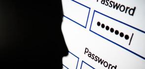 ПРОУЧВАНЕ ЗА 2020 ГОДИНА: Коя е най-популярната парола в интернет?