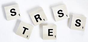 Учени с изненадващо откритие за стреса