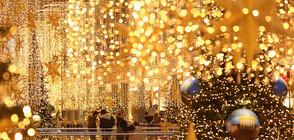 ВИРТУАЛНА КОЛЕДА: От СЗО препоръчват да не се събираме за празниците