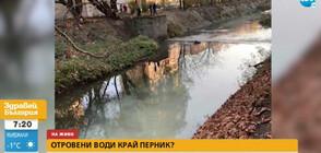 Река струма се оцвети в бяло (ВИДЕО)