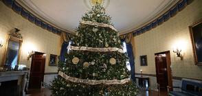 Мелания Тръмп посрещна коледната елха на Белия дом (ВИДЕО+СНИМКИ)