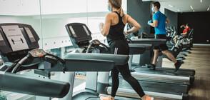 ПРЕДЛОЖЕНИЕ: Фитнес тренировките – услуга от първа необходимост