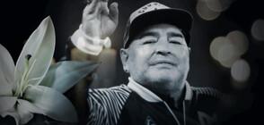 Артисти претворяват болката си от загубата на Марадона в мозайки (СНИМКА)