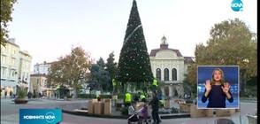 Коледна елха краси центъра на Пловдив