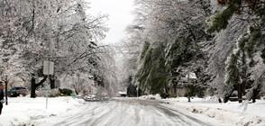 Заради ледена буря все още хиляди са без ток в руския Далечен изток (СНИМКИ)