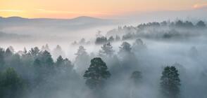 Мъгливо петъчно утро