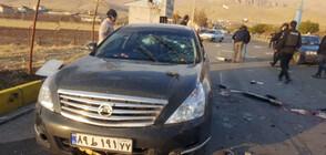 Убиха виден ирански ядрен физик
