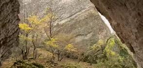 """ДОТАМ И ОБРАТНО"": Скалните великани до Реселец (ВИДЕО)"