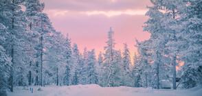 Студ и сняг сковават страната (ВИДЕО)