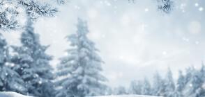 Първи сериозен полъх на зимата (ВИДЕО)