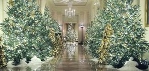 ПОДГОТОВКА ЗА КОЛЕДА: Мелания Тръмп показа украсата на Белия дом