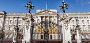 Задържаха кралски служител за кражба от Бъкингамския дворец