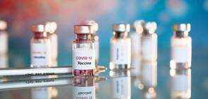Български учени: Ваксинацията срещу COVID-19 вероятно ще се забави