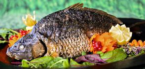 ДНИ ПРЕДИ НИКУЛДЕН: На какви цени купуваме рибата за празничната трапеза?