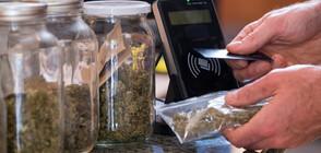 Конгресът на САЩ одобри декриминализация на марихуаната на федерално ниво
